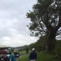 台湾旅行 幸福ゴルフクラブにて^^