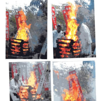 ゼロ磁場 西日本一 氣パワー 開運引き寄せスポット 護摩の炎写真とどく(4月16日)