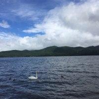 山中湖畔散策