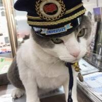 2017年5月26日(金)  北灘漁協のなる駅長