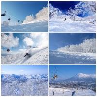 北海道の雪景色&お客様❣️