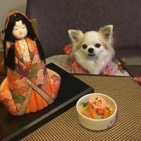 BOAT SHOWと雛祭り