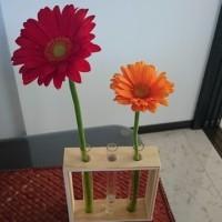 お花に癒されてます。