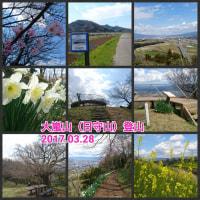 【モブログ】花咲く伊豆峰・大嵐山(日守山)