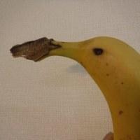 バナナで遊ぼう