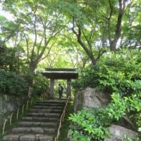 箱根旅行 4 ☆MOA美術館☆庭