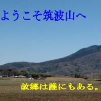 島崎藤村の「夜明け前」に描かれた水戸天狗党 (1)