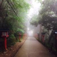 霧の中の高尾山