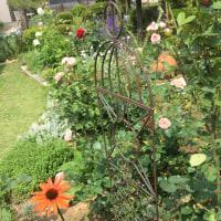 恒例の庭疲れ...