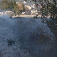 由布院温泉のこの寒さは好きです 空気が澄んでいます