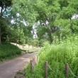 青葉の森公園 千葉市中央区青葉町