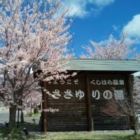 旧串原村の桜は満開だった 4月18日