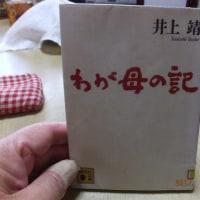 わが母の記