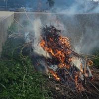 残渣の野焼き。