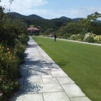 英国風庭園♪