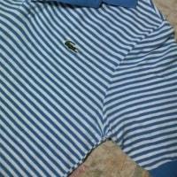 ラコステのポロシャツ。