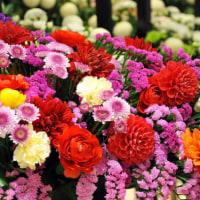 広島花の祭典