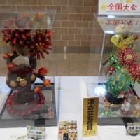 菓子祭り2017(小田原)