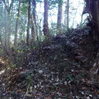 飯田城址の真冬の調査活動は