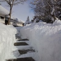 休館日明けは館内の雪かたしです( ^o^)/