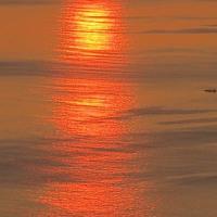 土佐湾の夕日ロード