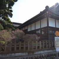 日本100名城&番外 川越城  2017-3-13