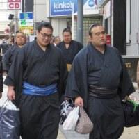 大相撲三月場所会場「大阪府立体育館」へ行きました
