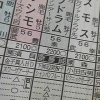 これは、阪急杯のサイン馬券なのか?