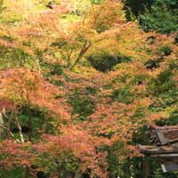 奈良の寺。。