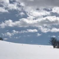 おめでとう ♪  & 雪の神内ファーム