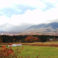 すっかり秋色の高原