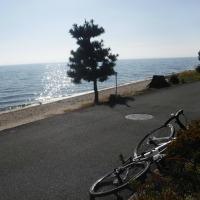 久々にサイクリング!