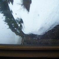 滞在型家庭菜園:車窓の外は雪でした