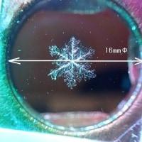 サイズの大きい 雪の結晶