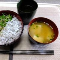 最近の昼食はシラス丼、煮豚丼にチキンライスなど。