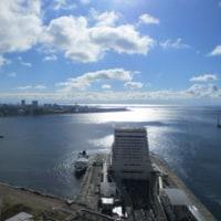 江戸川も寒かった
