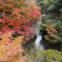 三条大穴の紅葉