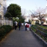 西武鉄道 駅長おすすめ! 新春!田柄川緑道ウォーク