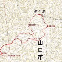 森林セラピー山口健康登山~飯ヶ岳~