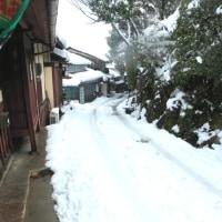 嵯峨野・雪景色Ⅳ