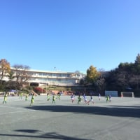 11月26日 第49回藤沢市少年サッカーリーグ[後期](最終節)