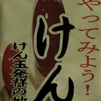 「けん玉」発祥の地 in 広島・廿日市市