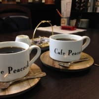 Cafe Peacockで演奏「シュークリーム」清水真弓(Vo)マイルストン石橋(Gt)