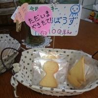 くまさんのぼうけん6/25 シフォンケーキとクッキーのお店うさぎとみかん