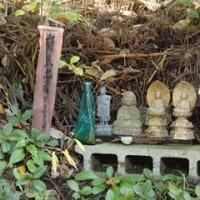 進化するコンクリートブロック寺院