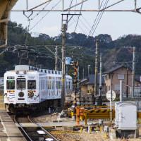 たま電車(和歌山電鉄貴志川線)