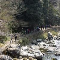 静かな奥嵯峨と清滝、錦雲渓を歩きました