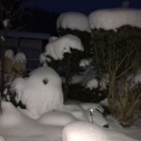 雪の宵に・・・