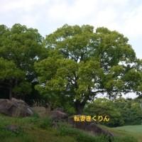 GW 1日目 ~長崎・九十九島パールリゾート~