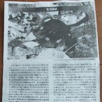 2016年、知床半島におけるリュウキュウムラサキの観察記録